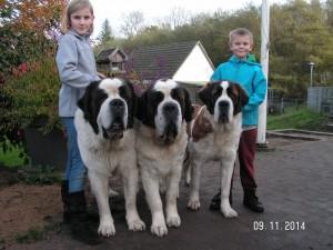 Gea til højre med sin far Coco til venstre og mor Akira i midten.